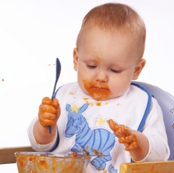 baby food recipes 8-month-old