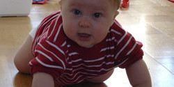 Baby Crawling Poll