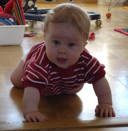 8-month-old baby crawls