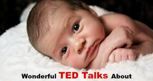 baby development ted talks