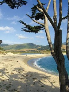 Beautiful Carmel California – Things To Do With Young Kids
