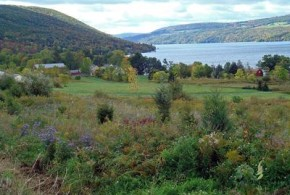 things to do in finger lakes with kids