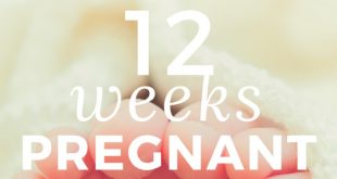 12-weeks-pregnant info