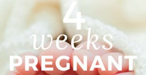 Being 4-Weeks-Pregnant – Implantation Time (Yes!) And Menstruation Due