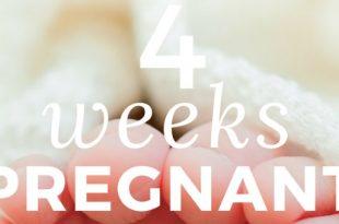 4-weeks-pregnant implantation