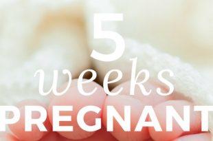 5-weeks-pregnant