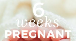 All about being 6 Weeks Pregnant –  Are You Nauseated? (Or just normal?)