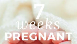 Being 7 Weeks Pregnant – Baby Now Has Small Arms and Legs!