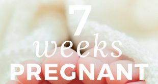 7-weeks-pregnant info