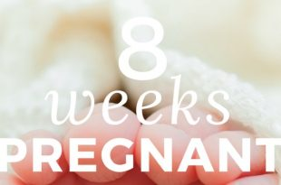 8-weeks-pregnant info