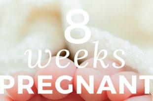 8-weeks-pregnant info
