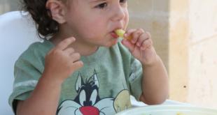 toddler won't eat