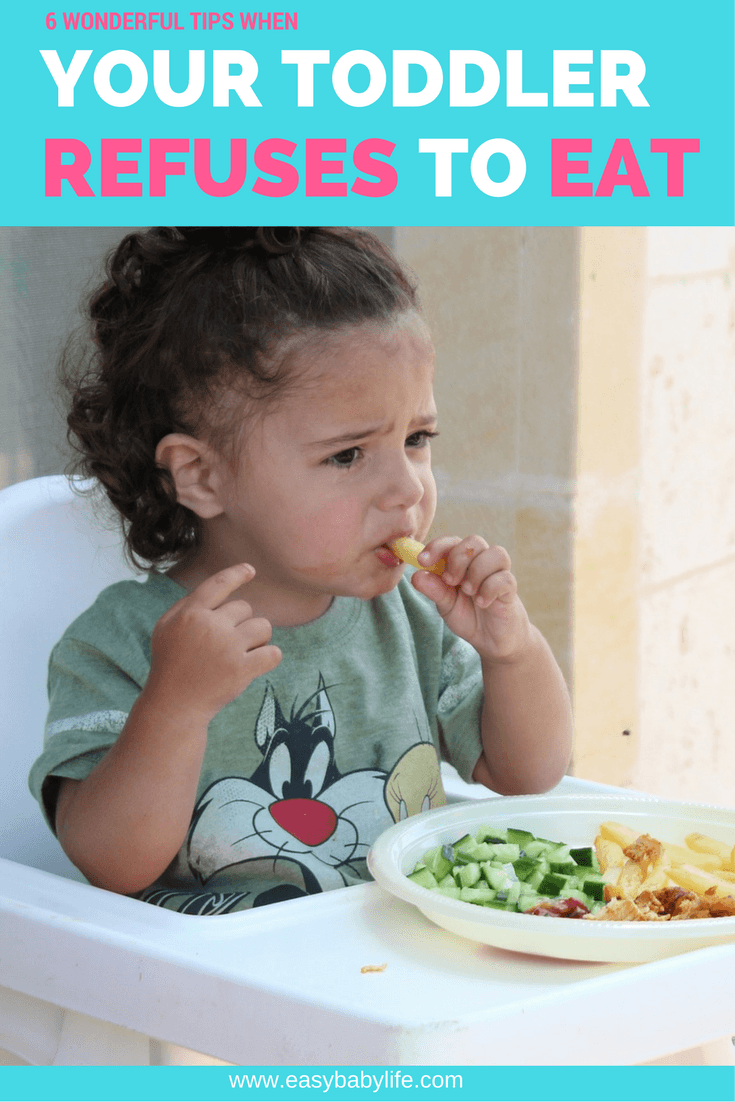 tips when toddler refuses to eat
