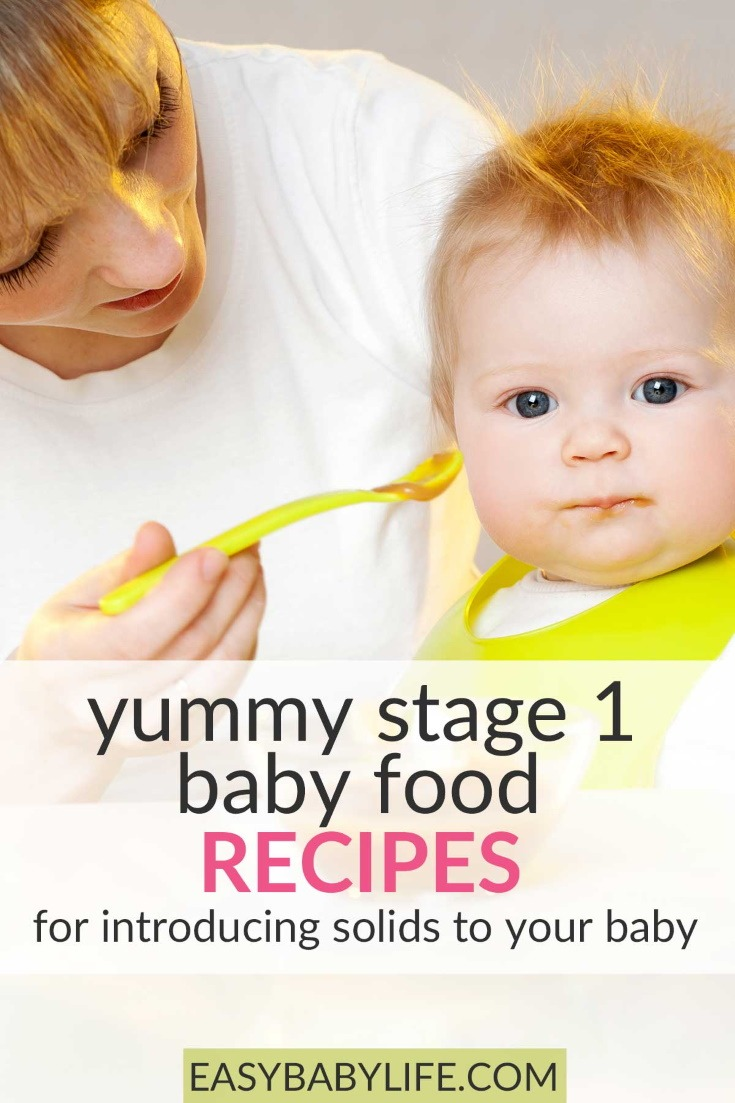 baby food recipes stage 1