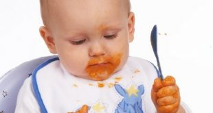 baby food recipes 8 months