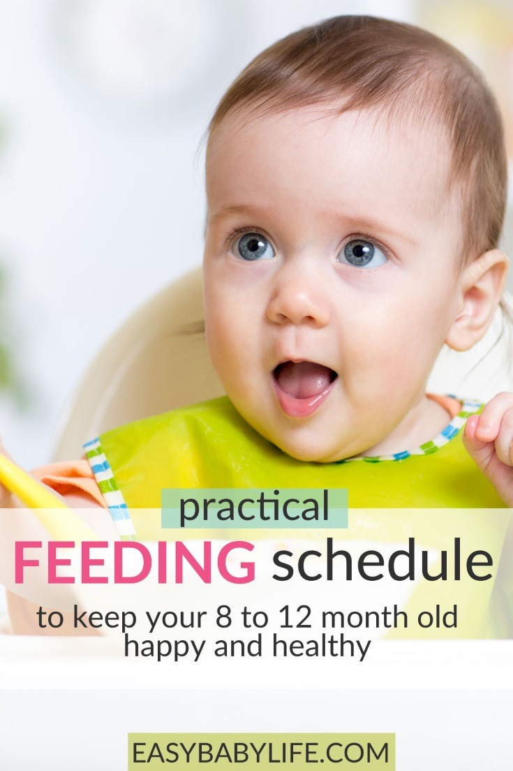 Great feeding schedule from 8 months to toddlers! Baby feeding schedule, toddler feeding schedule, feeding baby, feeding toddler, feeding tips for baby and toddler #babytips #toddler