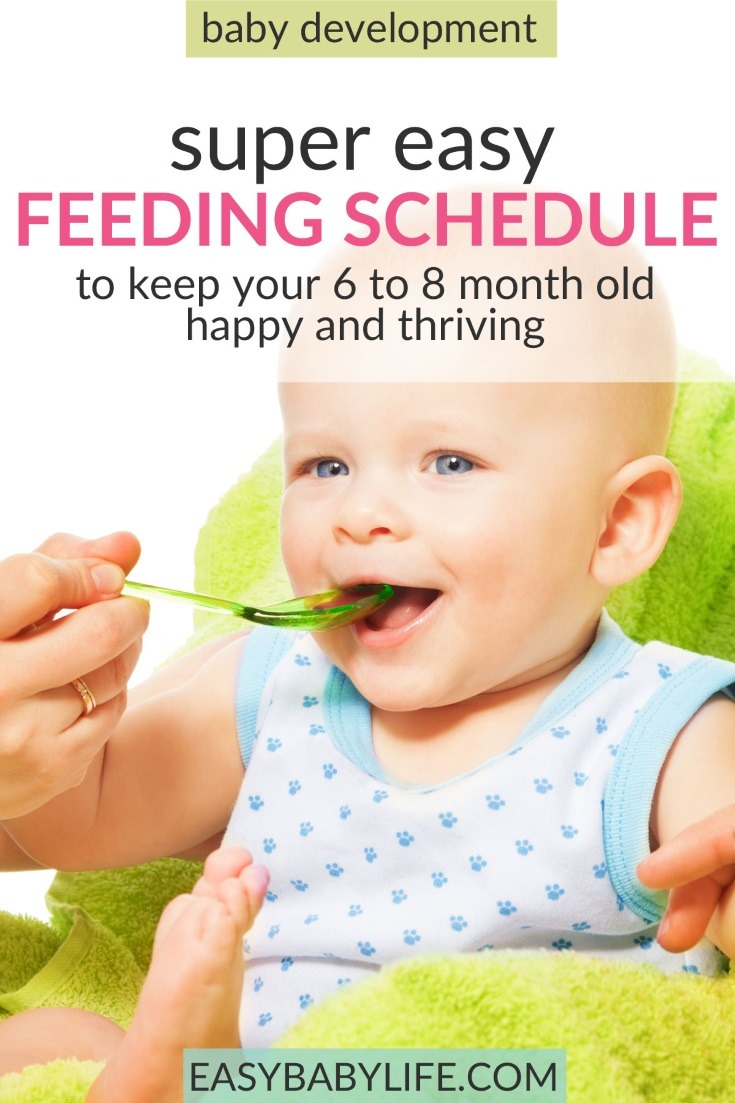 Simply and practical feeding schedule for 6-month-old babies up to 8-month-old babies! Feeding schedule for baby, baby feeding chart, baby feeding schedule when introducing solids, baby feeding tips