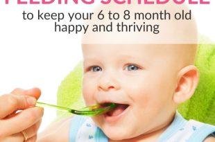 baby feeding schedule 6 months