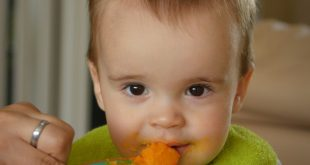 vegetarian baby recipes
