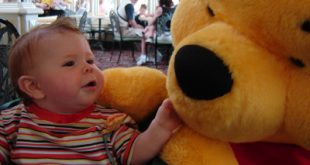 tips for disney world with a baby