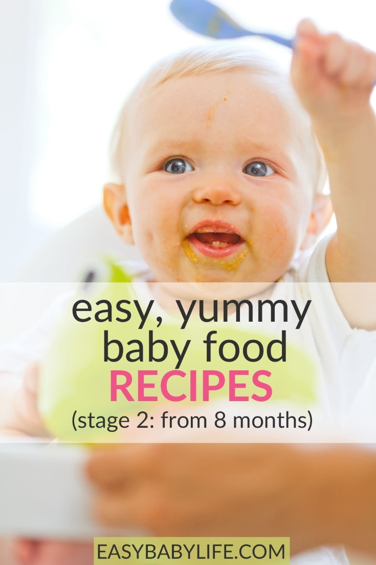 baby food recipes stage 2 from 8 months