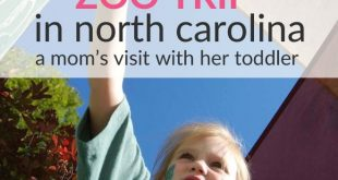 NC zoo baby-friendly
