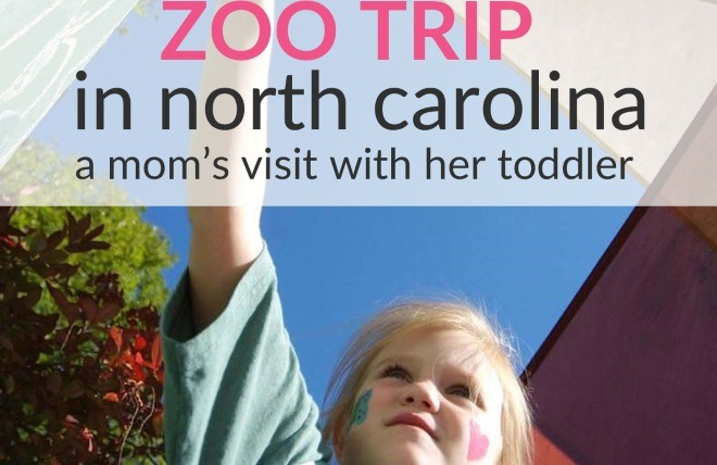 Baby-Friendly North Carolina Zoo! (Mom's Visit With Toddler)