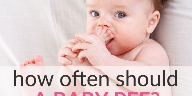 how often should a baby pee