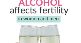 how alcohol affects fertility